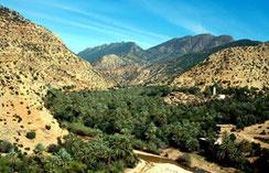 Habitat oasien, Pays des Ida-Outanane, Haut Atlas sud-occidental