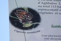 2 - Détail du panneau de la Réserve des Papillons
