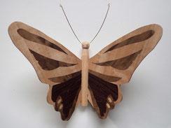 Papillon PPA_1603 - Ailes marquetées sur les 2 faces