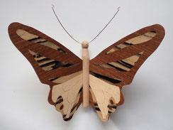Papillon PPA_1602 - Ailes marquetées sur les 2 faces