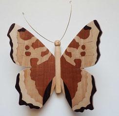 """Papillon modèle """"Petite tortue"""""""