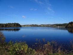 une photo sur le lac de devesset de couleur bleu bordé d'arbres, de forêt une grande base de plein air par le gite de la gorre en location pour vous faire découvrir l'ardeche