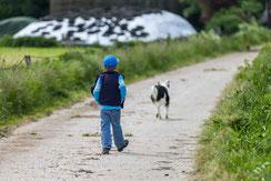 Junge und Hund auf dem Weg zurueck