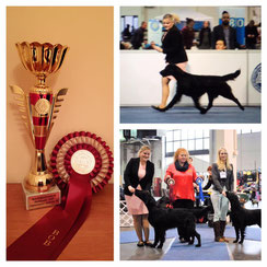 Miles won the breed friday & saturday!