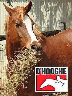 Angebote Pferdefutter von D*Hooghe.