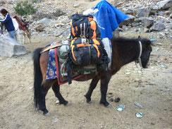 Rucksack auf Reisen...