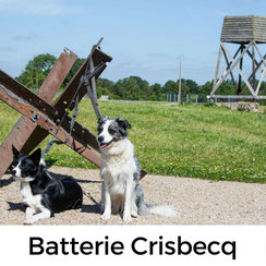 Batterie de Crisbecq, D-Day, Operation Overlord