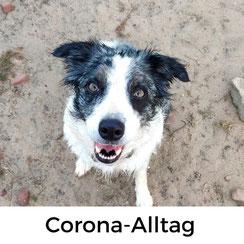 Alltag in Frankreich zu Corona-Zeiten