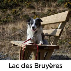 Lac des Bruyères