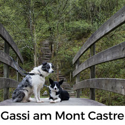 Kleine Gassistrecke am Mont Castre in der Normandie