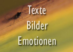 Valerie Forster, Button, Texte - Bilder - Emotionen