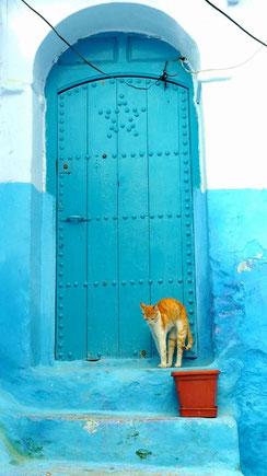 ドアの前での撮影お勧めです。