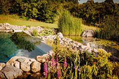 Ökologische Harmonie in Ihrem Naturpool