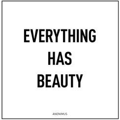 """Zitat von Philipp Brunschwiler :""""Everything has beauty"""" Alles hat eine Schönheit..."""