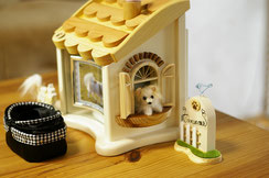 納骨、ペットのおうち、ペット仏壇、かわいいペット仏壇、天使のおうち