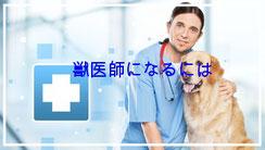 獣医師になるには