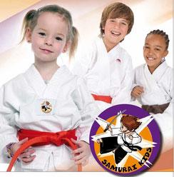 Das Samurai Kids System ist ein ausgezeichnetes Unterrichtsprogramm