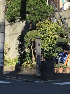 先日撮影を忘れた桜坂碑