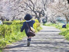 こんにちは卯月さん,shiho530さん,桜フォトコンテスト,2020,常盤堂 雷おこし本舗賞