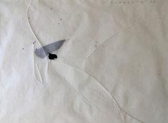 Ricordi | 2021 | 42x58 cm | Bleistift, Tusche auf Papier