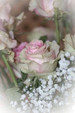Rosenstrauss rosa mit Schleierkraut