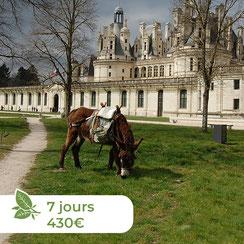 Les ânes de Madame - Balades accompagnées en Sologne, Val de Loire, châteaux de Chambord, Cheverny, Villesavin, du Moulin - Randonnées itinérantes Circuit des châteaux de Cheverny à Chambord