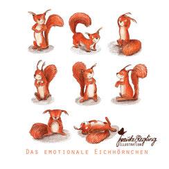 Eichhörnchen, Charakterdesign, Tier, Waldtiere