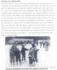 Bild: Seeligstadt Eisbahn Chronik 1996
