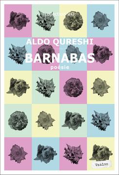 © Éditions Vanloo / ISBN : 9791093160337