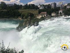 Europas größter Wasserfall - der Rheinfall - ist ein Muss am Bodensee.