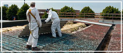 Bild Asbestentsorgung von Holzbau und Zimmerei Böll in Freystadt, Neumarkt und Umgebung
