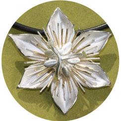 Bild:Passininsblumen Anhänger