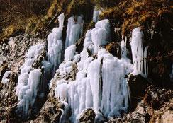 氷の滝 (半切)
