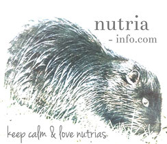 keep calm & love nutrias