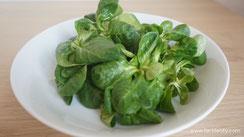 Grünes Gemüse als Lieferant für Folate und Folsäure Lebensmittel