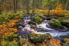 Belgien: Flusslandschaften