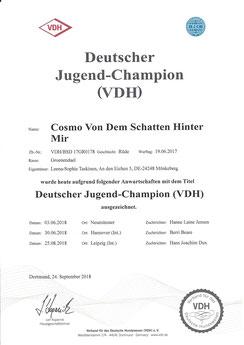 Cosmo's Jugend-Champion Urkunde