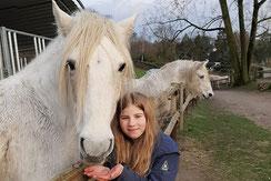 Pferde und Kinder