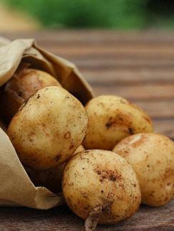 Kartoffeln vom petershof Kärselen