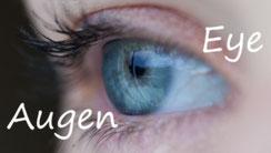Schönheit für Ihre Augen - Lidschatten, Mascara, Eyeliner & Grundierung