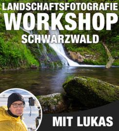 Workshop Schwarzwald, Lukas Voegelin