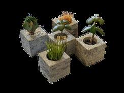マツシロック 植物ポット(キューブ)