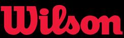 Wilson link