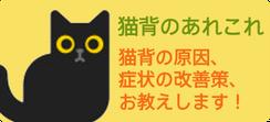 猫背のあれこれ 猫背の原因、症状の改善策、お教えします!