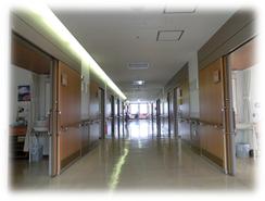 廊下:幅広めの廊下となっています。