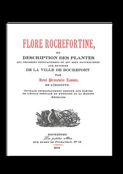 Les petites allées, Flore Reochefortine, René Primevère Lesson