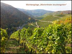 Im Ahrweindepot am Ahrweiler Marktplatz sind umfangreiche Weinproben möglich.