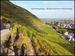 Bad Neuenahr-Ahrweiler bietet die besten Rahmenbedingungen für Weinproben an der Ahr.