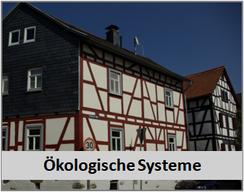 Ökologische Systeme Malerbetrieb Sebastian Becker in Lahnau Waldgirmes