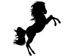 Wandtattoo Wandaufkleber Wandsticker günstig online kaufen  Mädchenzimmer Mädchen Zimmer Kinderzimmer Baby Kind Pferd Einhorn Reiten Pony